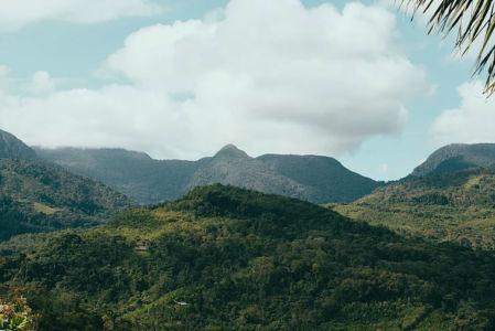 Ayahuasca Center- Green jungle mountains